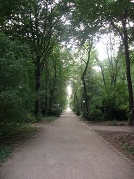 In Tiergarten